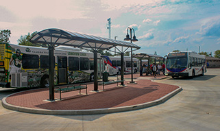 Longview Transit